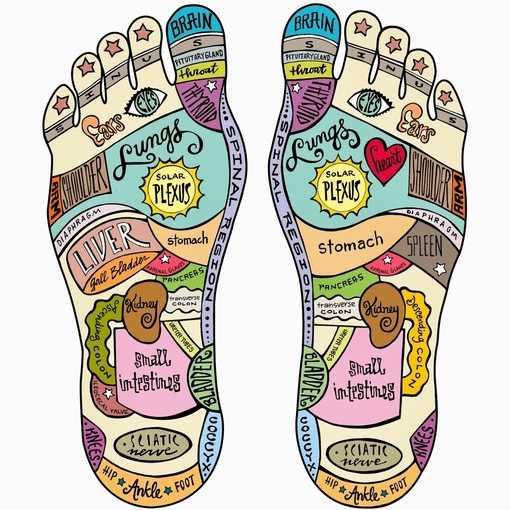 Professional Reflexology Training photo